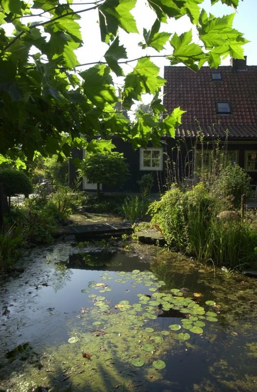 tuin met vijver projecten oxalis On tuin met vijver