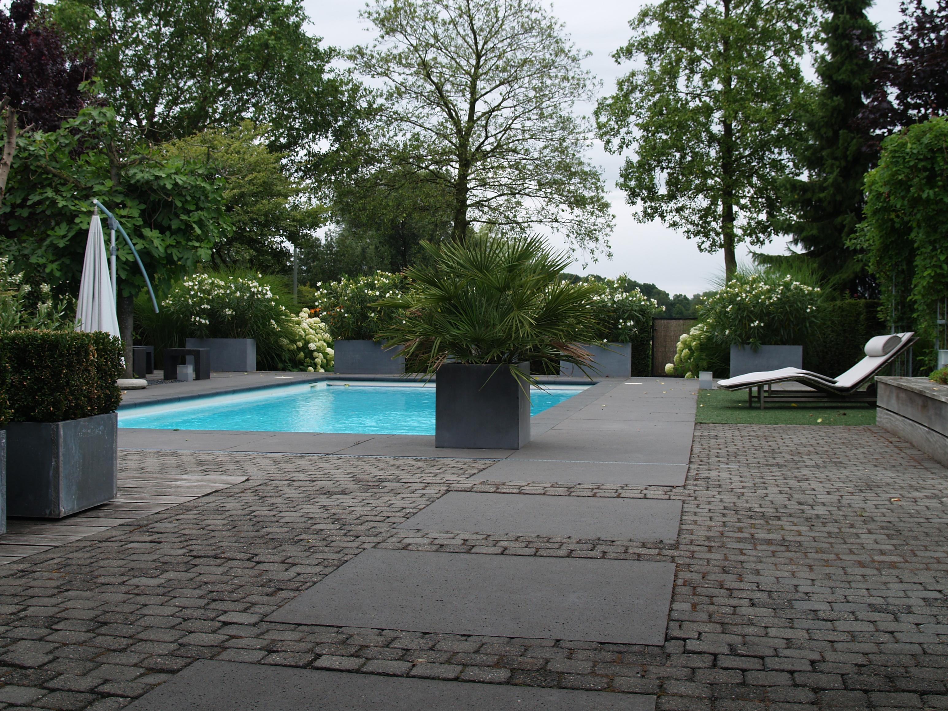 Tuin met zwembad projecten oxalis - Te dekken moderne tuin ...