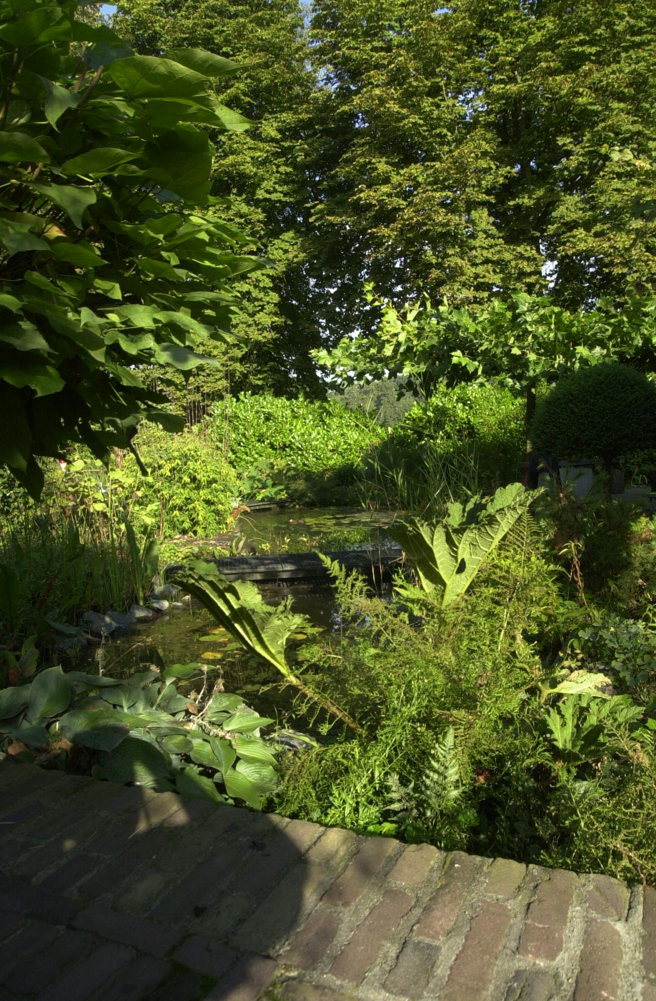 Tuin met vijver projecten oxalis for Tuin en vijver